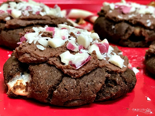 Peppermint Hot Chocolate Cookies – Gluten Free and Vegan