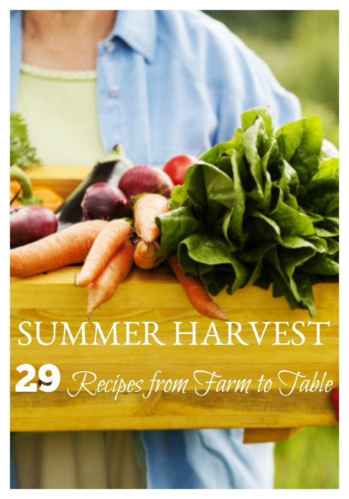 Whether you are enjoying the summer harvest out of your own garden or are enjoying the local Farmer's Market or CSA, this is the best time of year for farm-to-table dining. But sometimes, the bounty is bigger than our good ole stand-by recipes... which isn't a bad thing. Fear not, these 29 summer harvest recipes will go straight from garden or farm to your table for the entire family to enjoy!