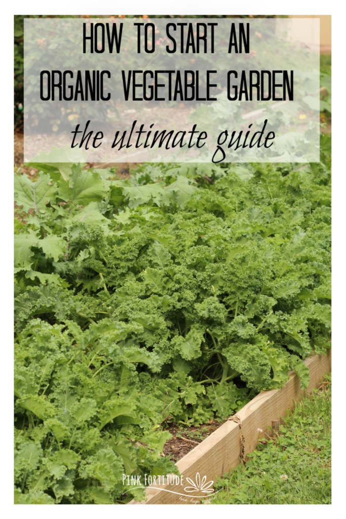 Are you thinking about starting a vegetable garden but no clue where to begin? It's easier than you think to start an organic garden - whether you plant in-ground, or via raised beds or containers. We actually call ours a Victory Garden! This is your ultimate guide to starting your organic vegetable garden from planning to sowing and growing to enjoying your harvest.