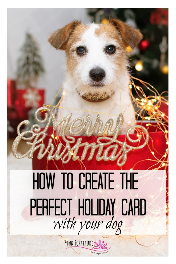 Your pup is a member of the family and of course, you want your holiday card to include your dog! Or maybe you have a new puppy who is just as cute as can be. But how do you make it happen? Here are 12 tips to create the perfect holiday, Christmas, or Hanukkah card with your dog or puppy and how to take the photos to make it happen!