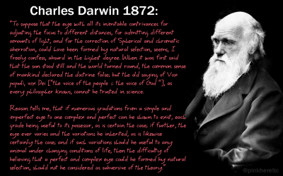 To suppose that the eye with all its inimitable contrivances for adjusting the focus to different distances... Charles Darwin