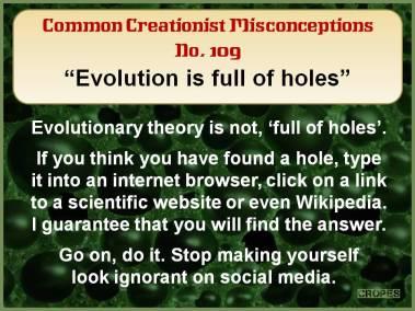 Evolution is full of holes