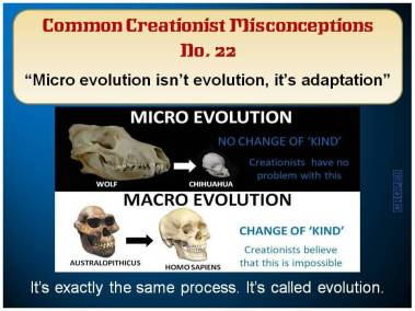 Micro evolution isn't evolution, it is adaption.