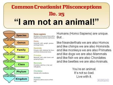 I am not an animal!