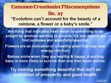 Evolution can't account for the beauty of a rainbow, a flower or a baby's smile.