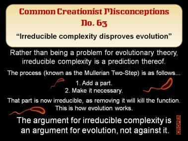 Irreducible complexity disproves evolution.