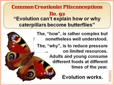 Evolution can't explain how or why caterpillars become butterflies