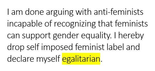 Egalitarian vs feminist