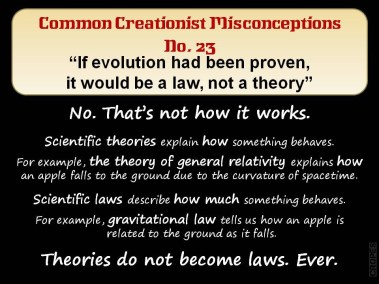 If evolution had been proven it would be a law, not a theory