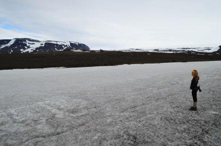 ice-1208