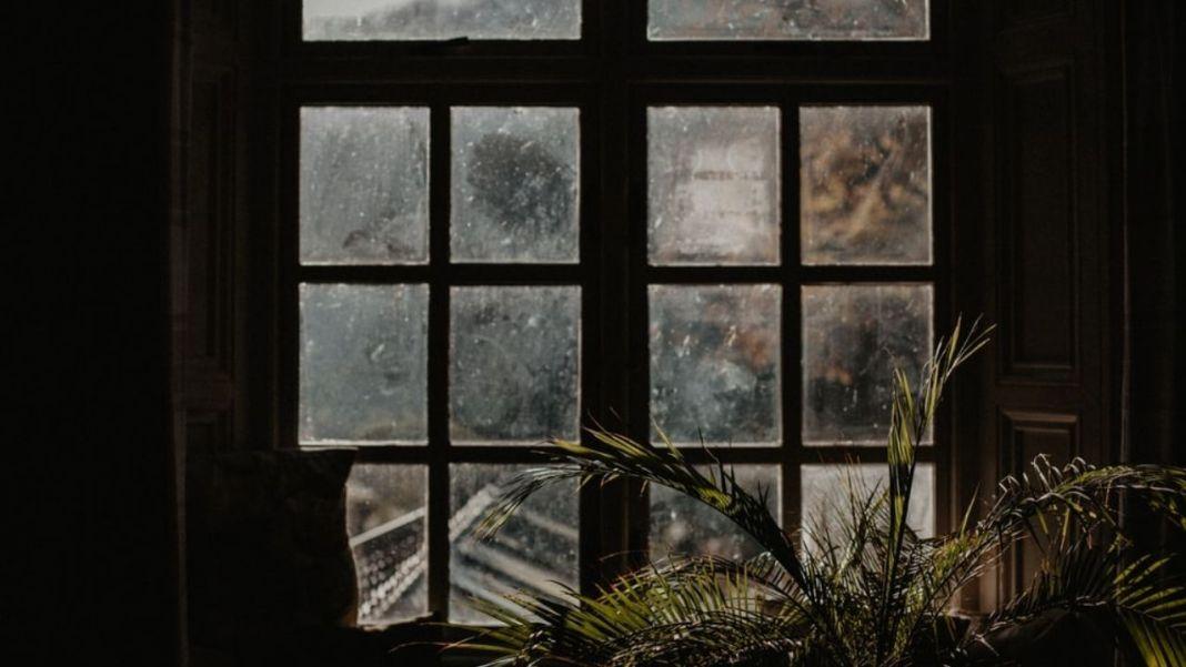 Dark Academia: An Exploration Through Photographs