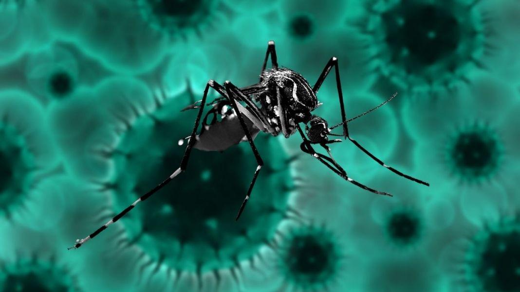 Zika Virus Kerala