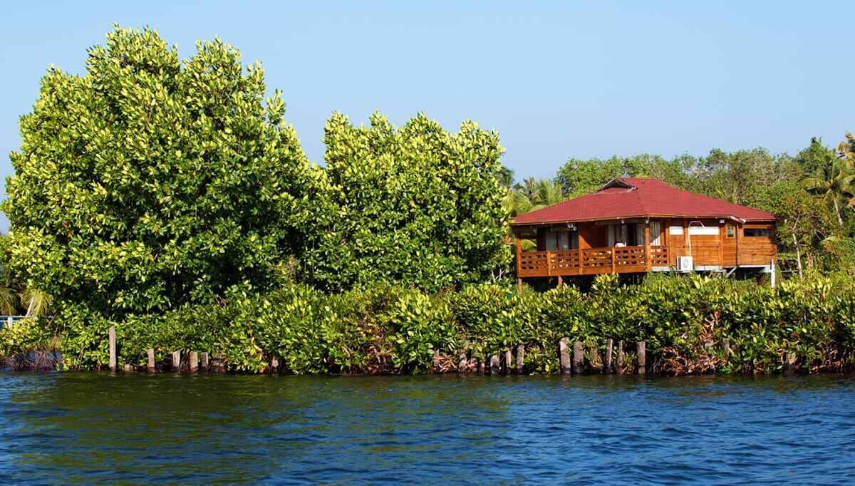 Private Islands In Kerala