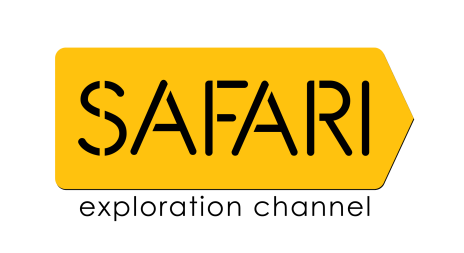 Shows We All Loved Watching On Safari TV