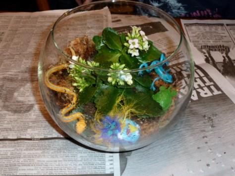 Sophie's Terrarium