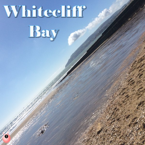 Whitecliff Bay Review: Area 19 Park 146