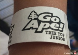 Go Ape Tree Top Junior Wyre Forest