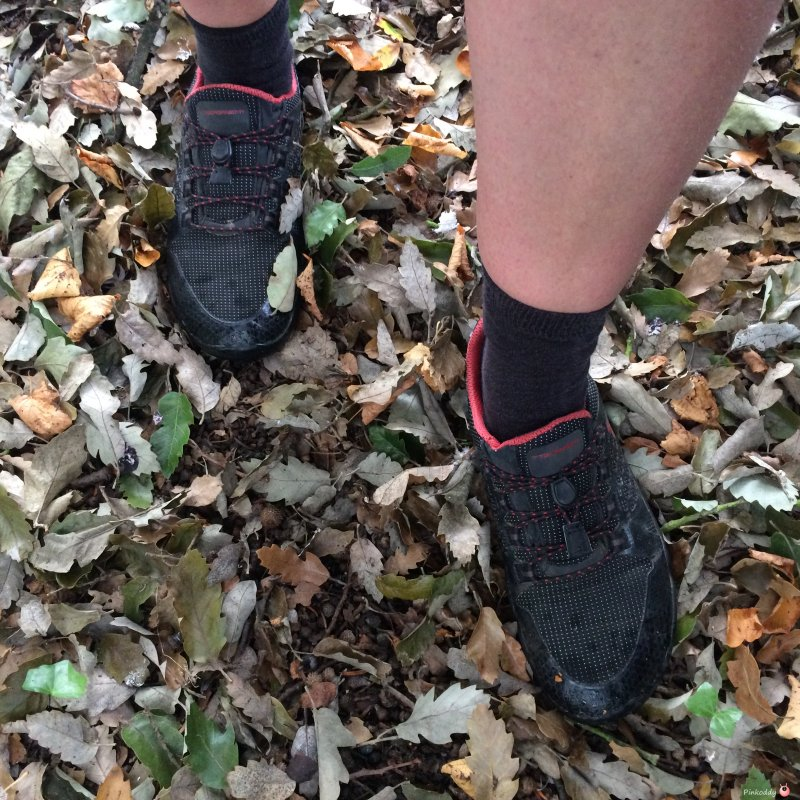 running shoes in autumn leaves