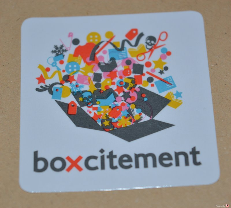 Boxcitement surprise subscription box