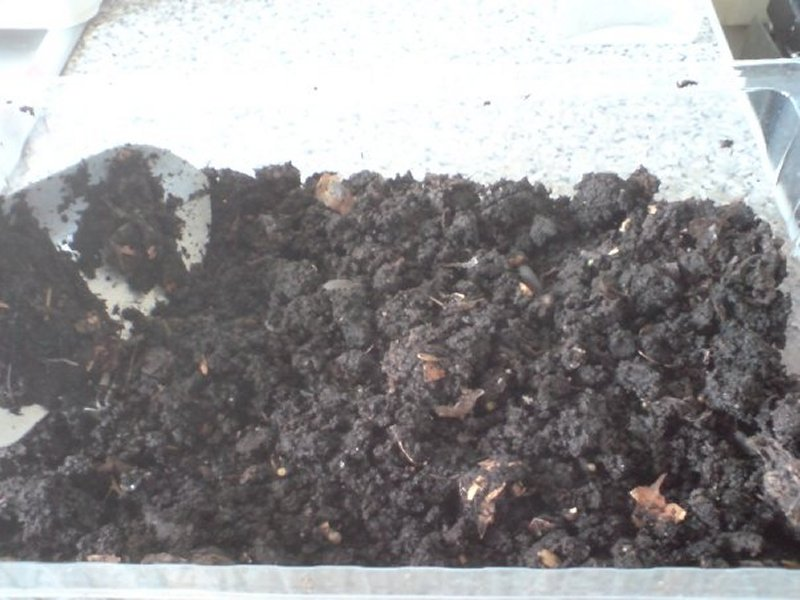 compost from recycling food, paper, hair, cardboard etc