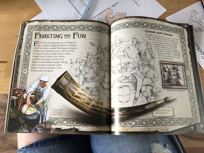viking book