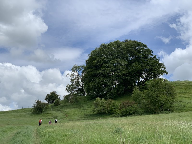 Beautiful views along the Cotswold Way as part of Race to the Tower