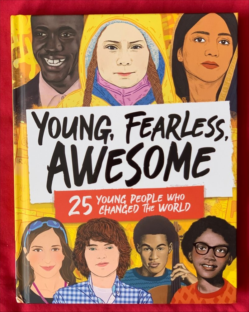 Young, Fearless, Awesome - 25 Young People Who Changed the World book