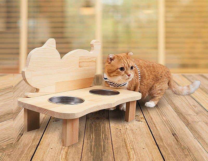 寵物餐桌木工DIY課程