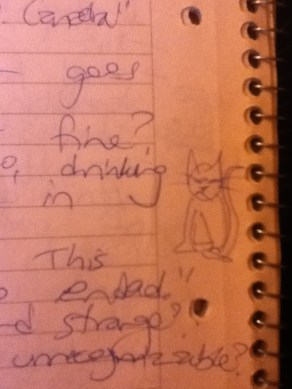 Sometimes I draw angry cats as I take scrupulous notes.