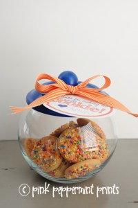 Cookie jar 1 web 683x1024 1