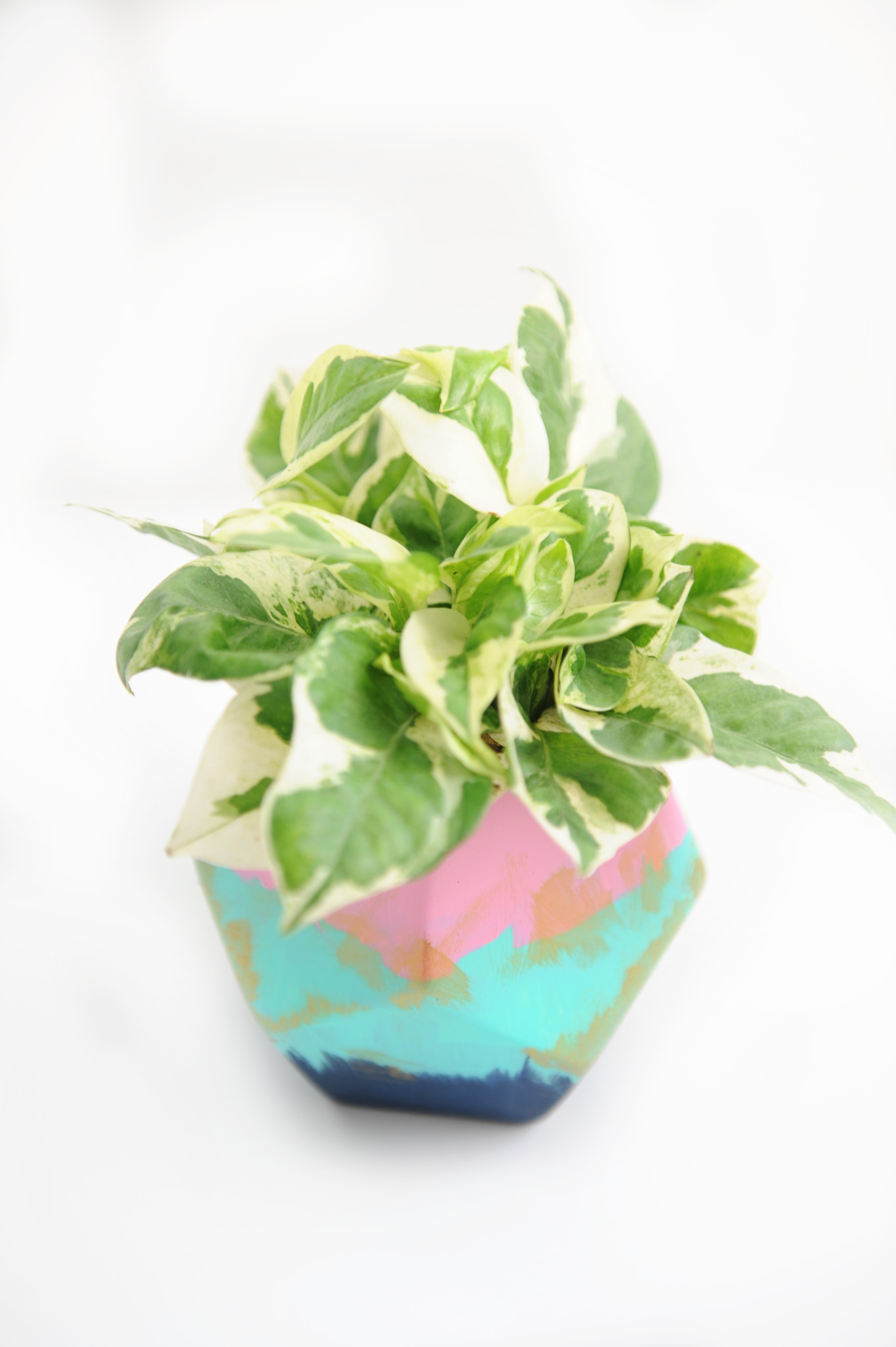Paint Your Own Pottery : DIY Painted Ceramic Planter