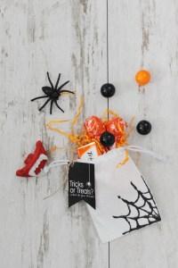 Spiderweb bag 1