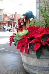Holiday Family Fun at Knott's Merry Farm