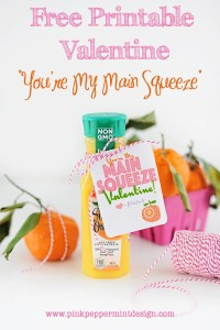 Handmade Free Printable Valentine : You're My Main Squeeze Valentine