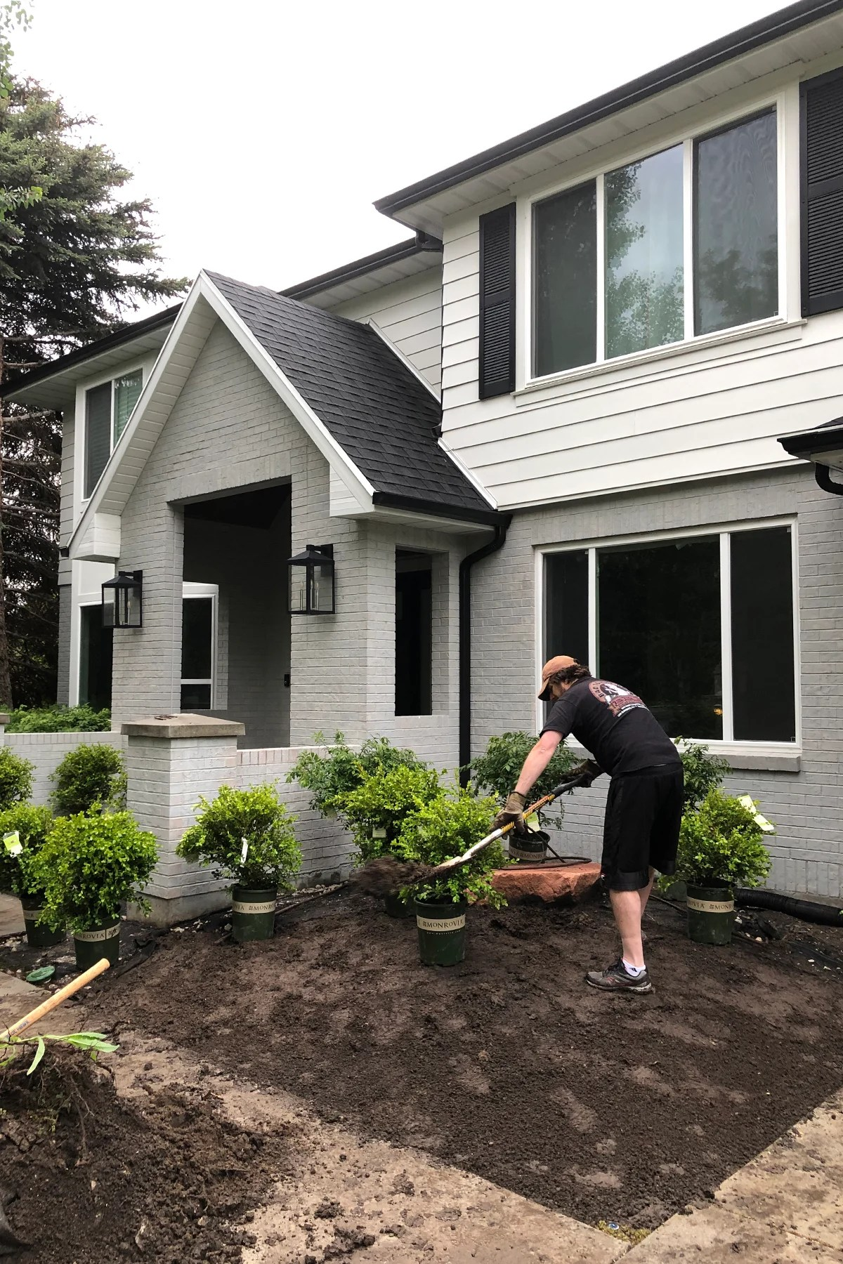 Front yard diy landscaping