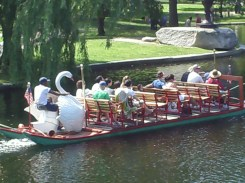 swan boat in Boston