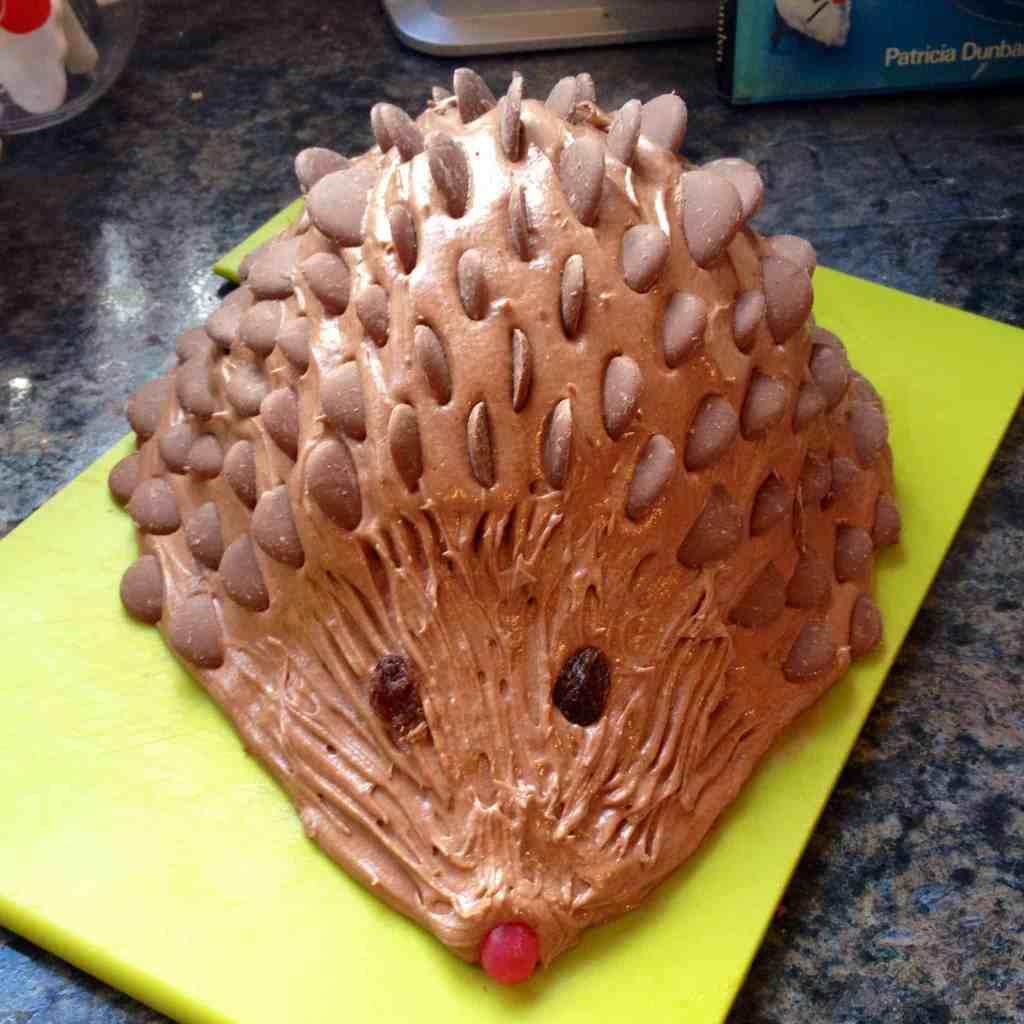 Fantastic How To Make A Chocolate Hedgehog Cake Pinkscharming Funny Birthday Cards Online Inifodamsfinfo