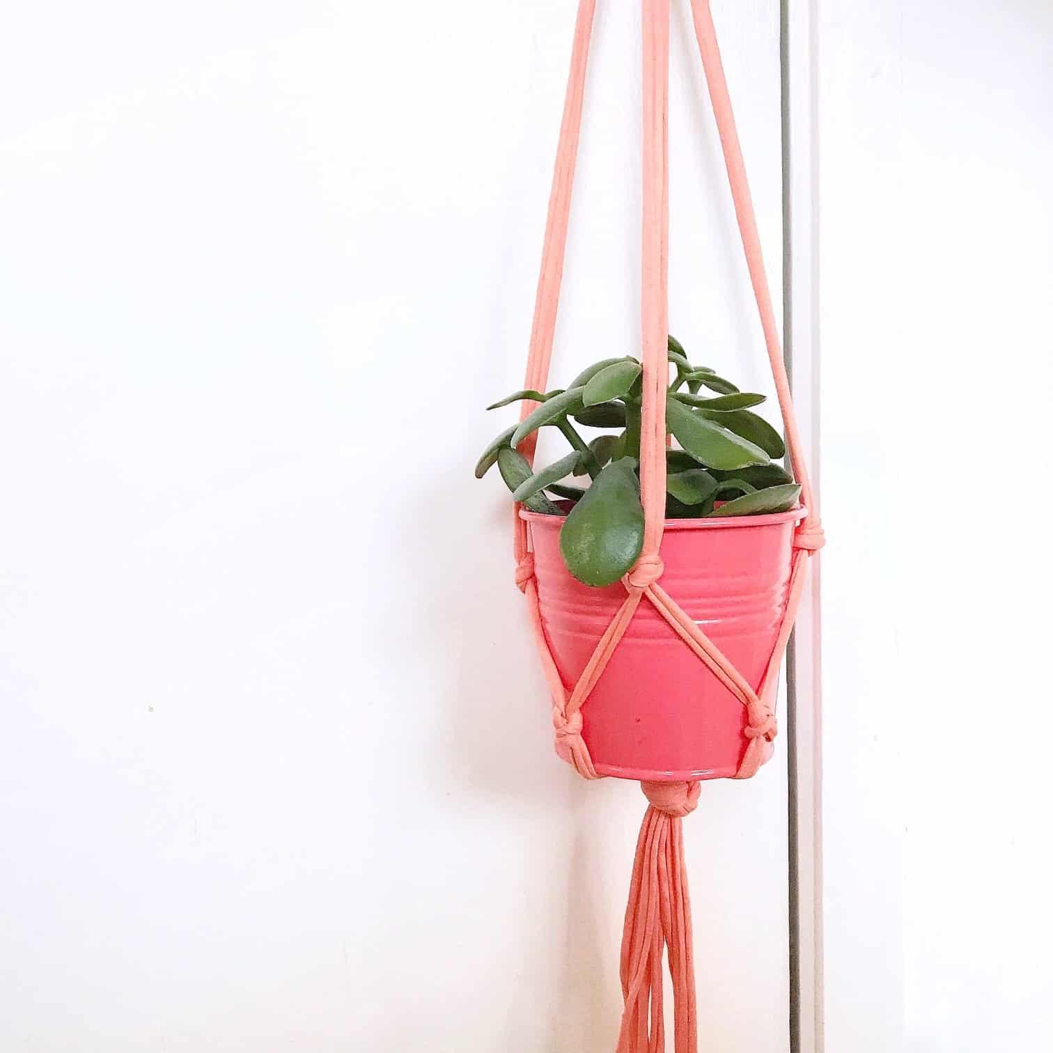 My Coral Pink Macrame Plant Hanger
