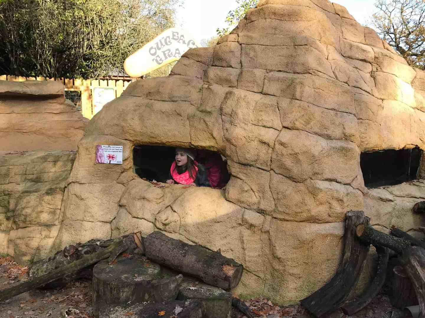 In the meerkat hide at Hertfordshire's Paradise Wildlife Park
