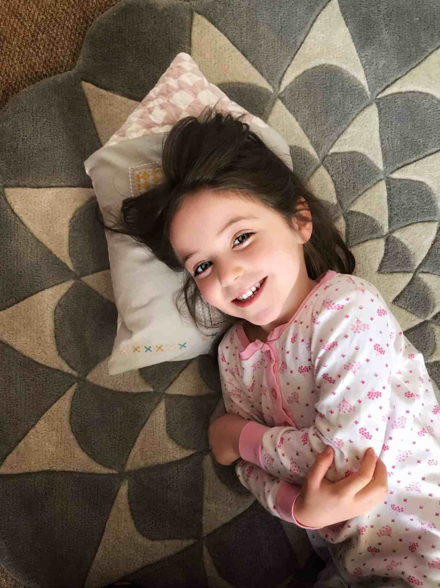 Soft plush grey rug and house cushion