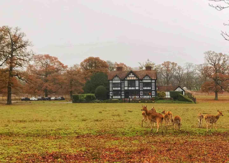 Paris House with deer in Woburn Park