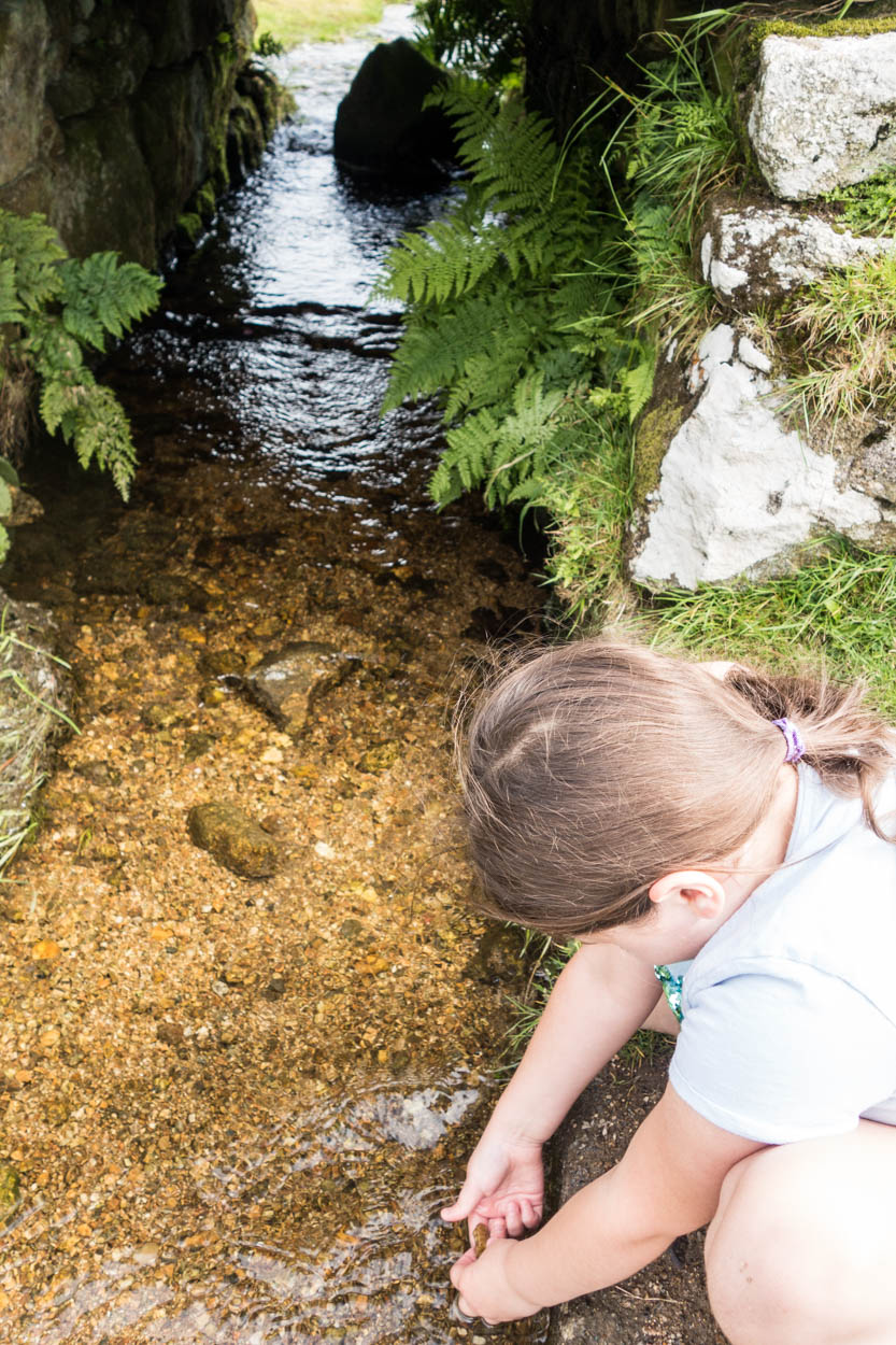 Miss France investigating the stream flowing under a stone bridge on Bodmin Moor, Cornwall