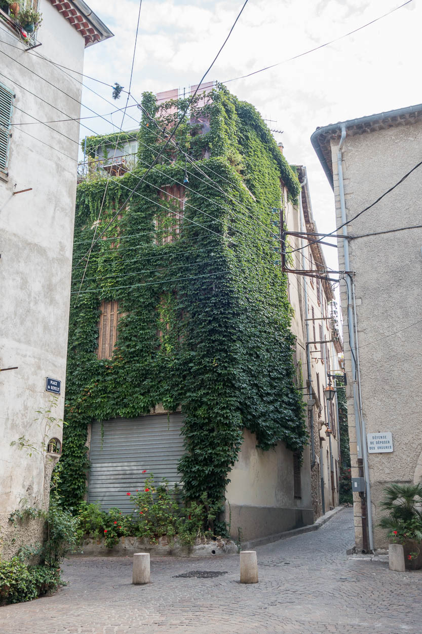 Ivy-covered house, Antibes