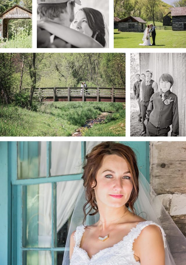 Pink Spruce Photography Best of Wedding Photos for 2017 - Nvette and Vic