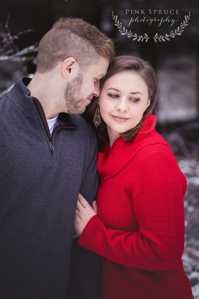 Winter Engagement Session at Cassell Hollow Farm | Pink Spruce Photography