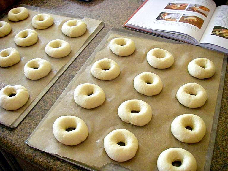 Formed Bagels