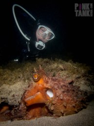 LOGO Adriana Posing with Octopus-2