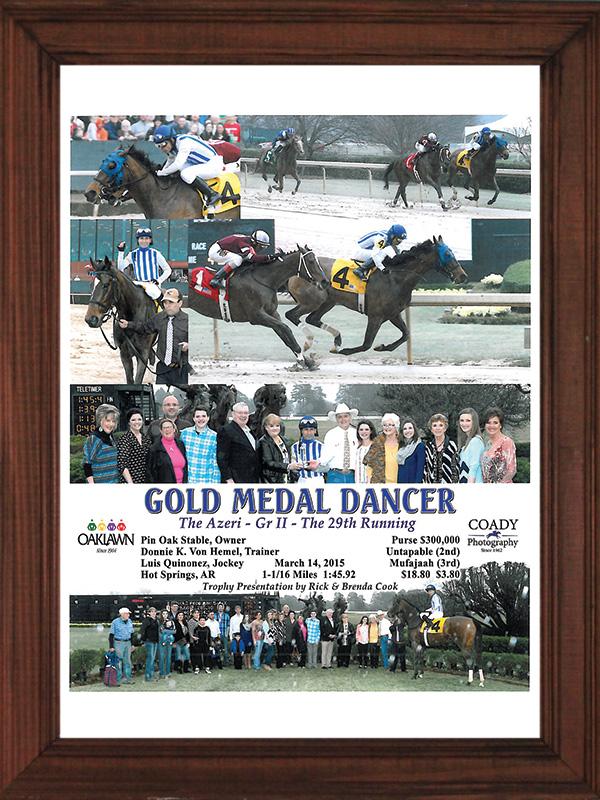 GOLD MEDAL DANCER 2015-3-14