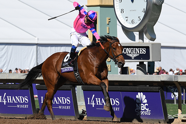 Champion 2YO Filly and Breeders' Cup Juvenile Fillies-G1 Winner of $1,286,600