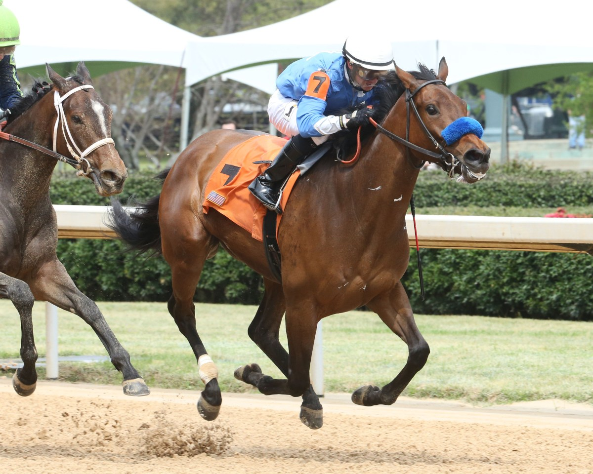 FIRST ALTERNATE Scores in High-Class Allowance at Oaklawn Park